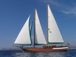 MS stands for motor sailer or motorsailers