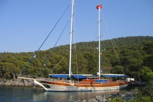 MS Tarkan 5 on anchor