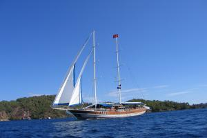 MS Tarkan 5 under sail